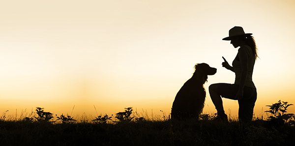 Lessons From a Dog Trainer: How I Got in My Own Way